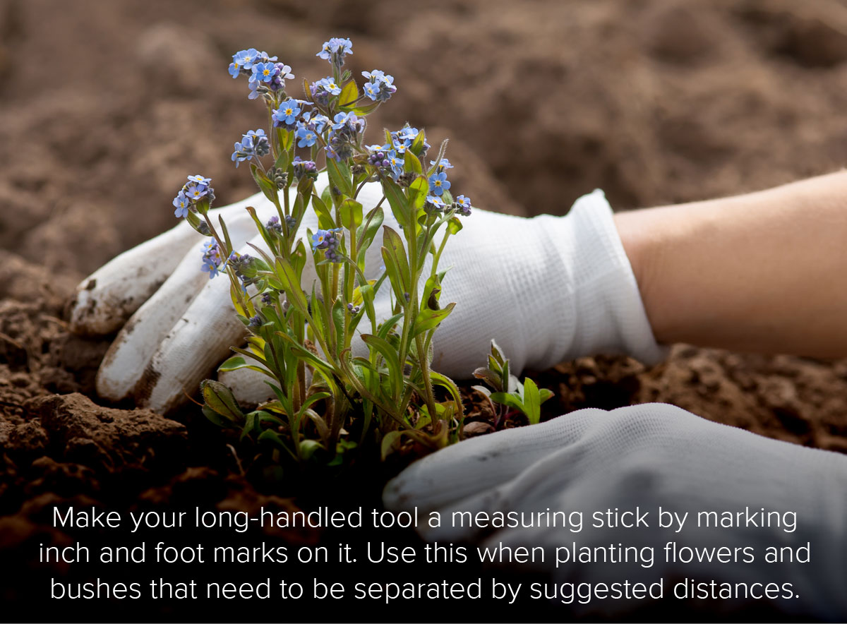 Landscaping Tips!